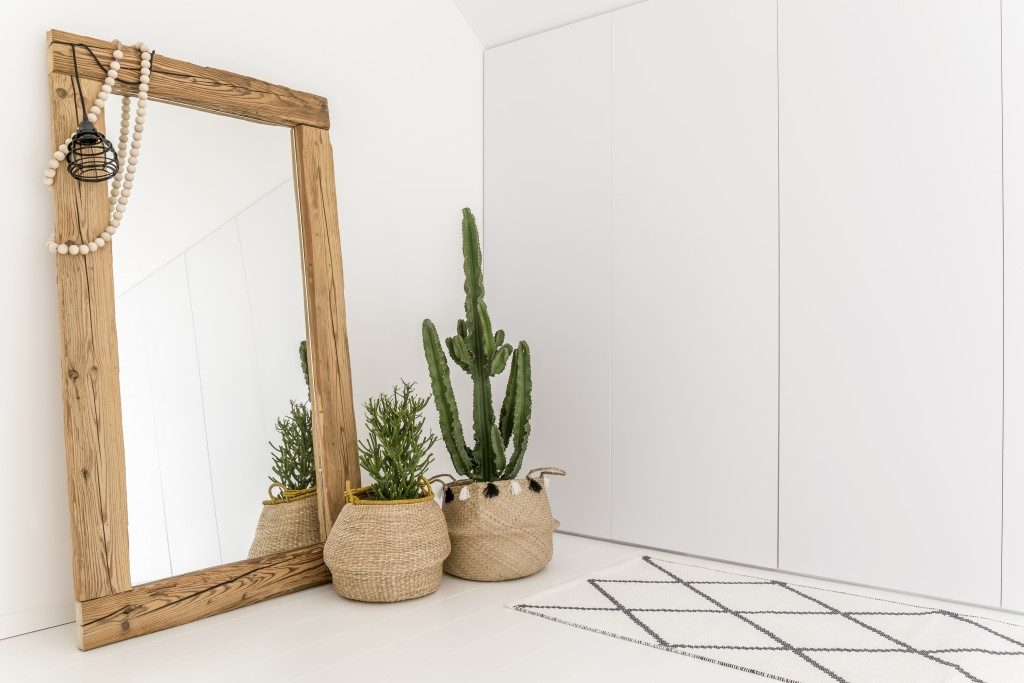 Mirror and plants in a white room