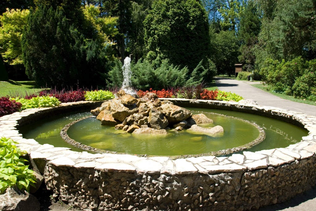 Garden fountain surrounded by flowers